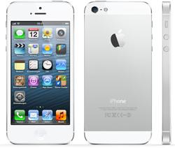 Iphone S Kein Netz